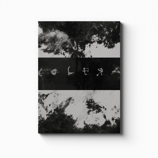 COLERA_catalog mock up_8