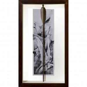 doves arrow